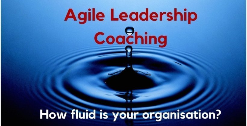 Agile Leadership Coaching - Richmond Innovation