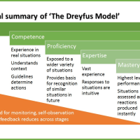 The Dreyfus Model (a visual summary)