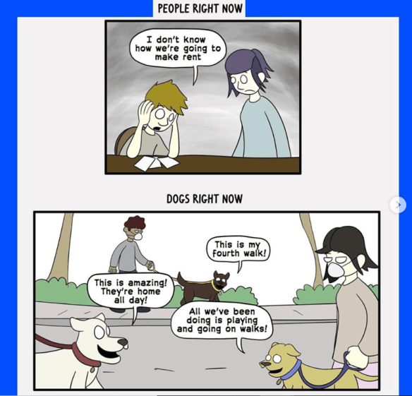 Cartoon - PEOPLE RIGHT NOW I don't know how we're going to make rent DOGS RIGHT NOW This is my Fourth walk! This is amazing! They're home all day! All we've been doing is playing and going on walks!