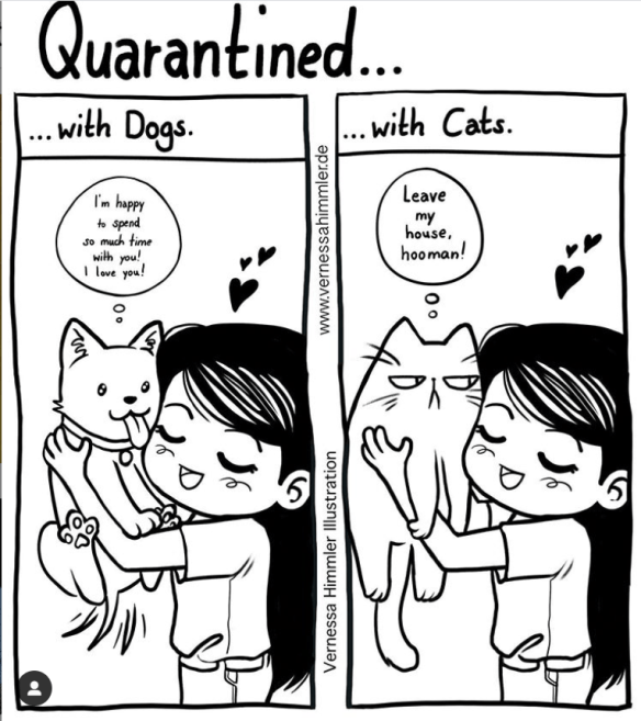 White - Quarantined.. . with Dogs. .. with Cats. Leave I'm happy to spend so much time with you! I love you! my house, hooman! Vernessa Himmler Illustration www.vernessahimmler.de