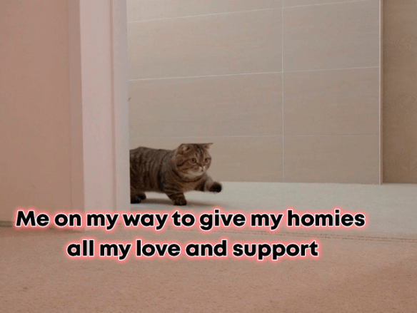 Cat - Me on my way to give my homies all my love and support