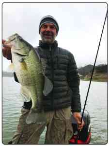 Lake cachuma Largemouth Bass