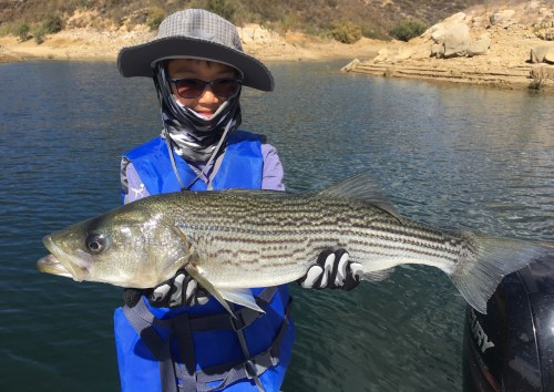 Castaic Lake Fishing Guide 10/07//2018