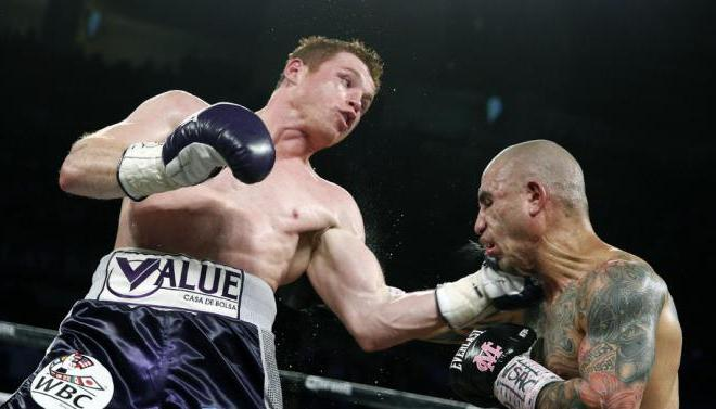 canelo landing a punch