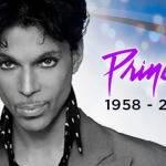 fentanyl: an accidental overdose killed prince
