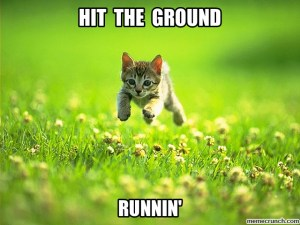 a meme of a kitty hitting the ground running