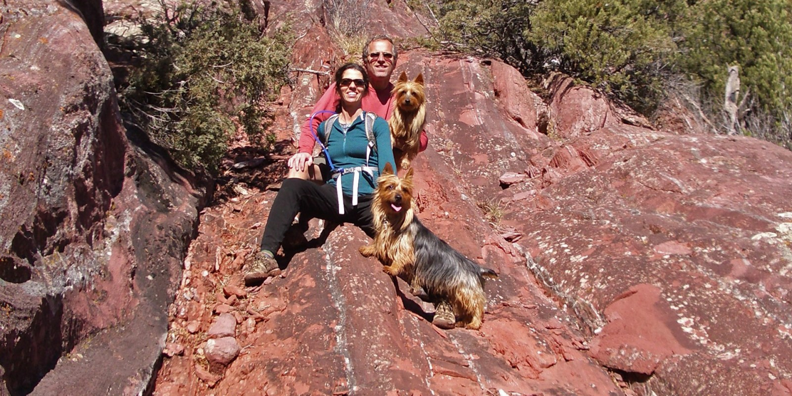 hikers pose with two dogs on a rocky trail