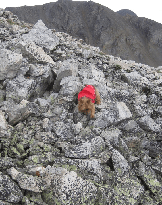 Emme picking her way carefully down a rocky path