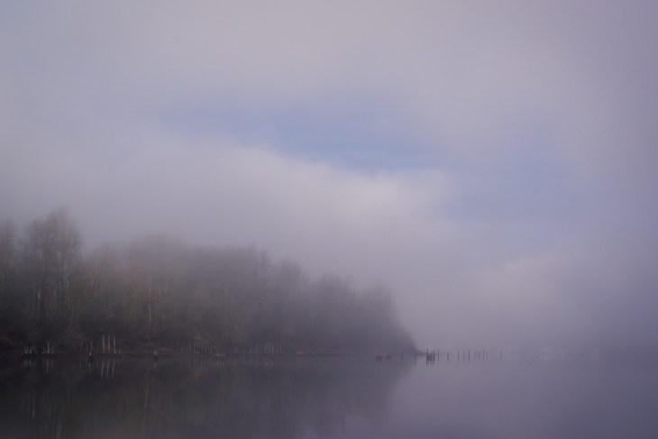 sauvie-fog-study-3