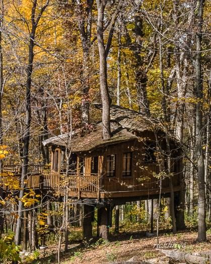 "Mt. Airy Park, Cincinnati, Ohio. ""Superb Composition"" Peer Award on international website ViewBug. ""Photo of the Day"" on CaptureCincinnati.com."