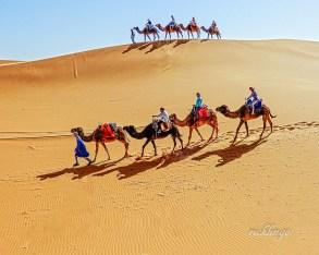 Sahara Desert, Morocco.