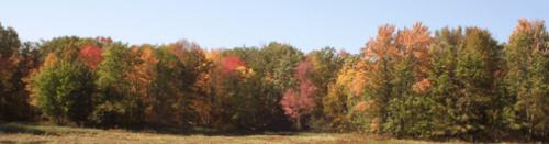 october-2007-2