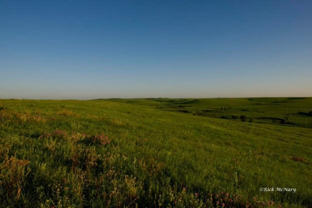 A Flint Hills Prairie Morning