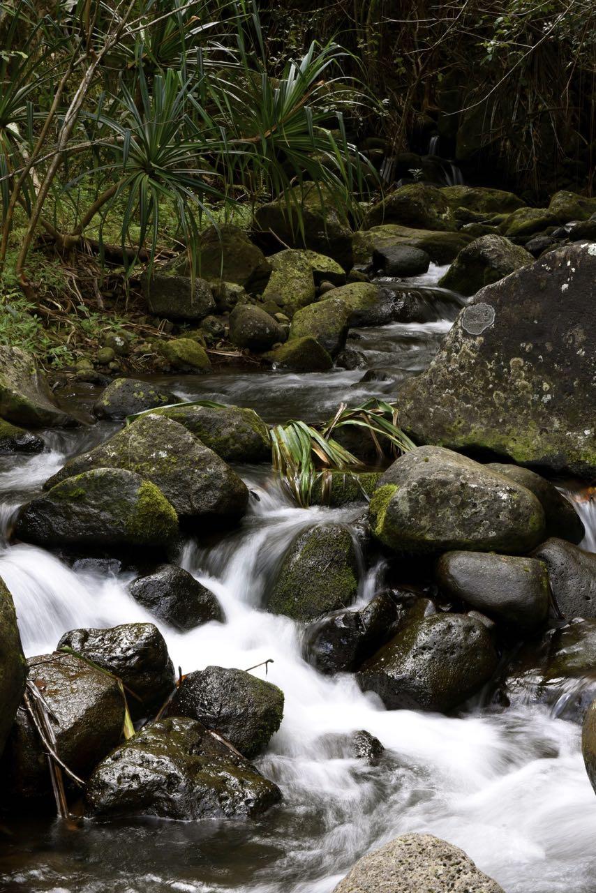 Limahuli Stream