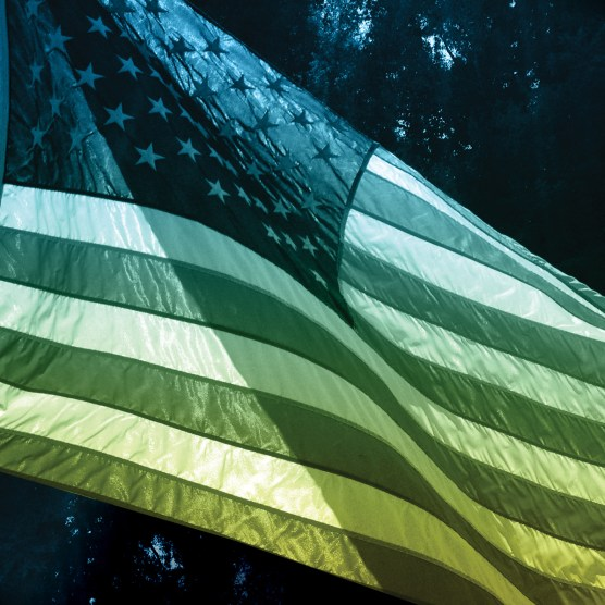 Americana_1_flag