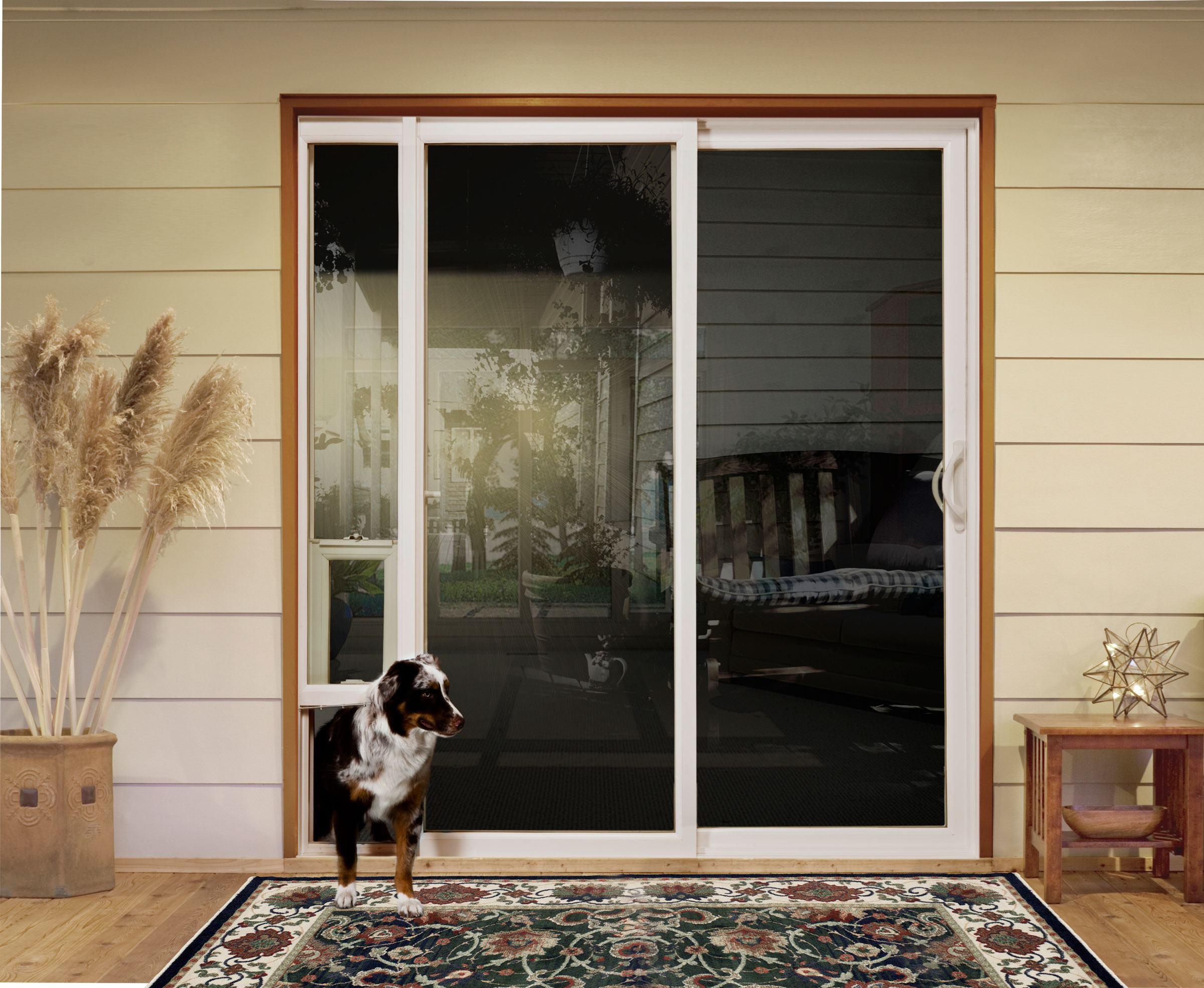 Diy Guide On Installing Pet Door In Glass Door