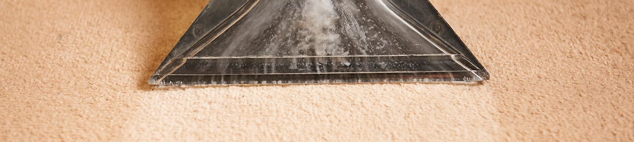 residential carpet cleaning, commercial carpet cleaning, Tacoma