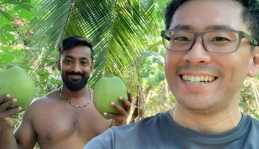 現地でしか味わえない!スリランカの新鮮ココナッツジュースの飲み方とその味は?