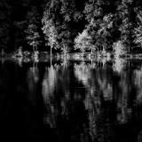 RickZeleznik - Waters Edge