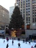 Christmas Tree at Rockfeller Center