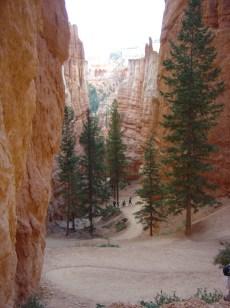 Bryce Canyon NP_Navajo Trail