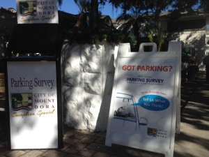 Mount Dora Parking Survey 1