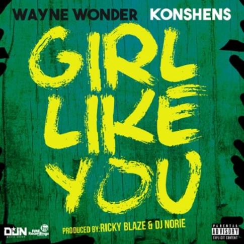 WayneWOnderKonshens