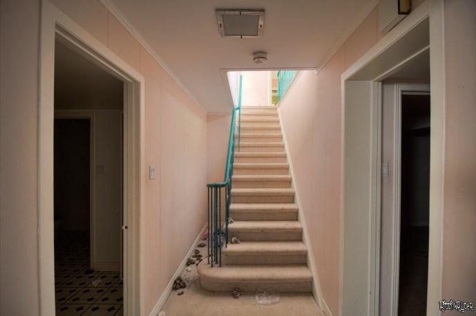 California Ranch Basement Stairs
