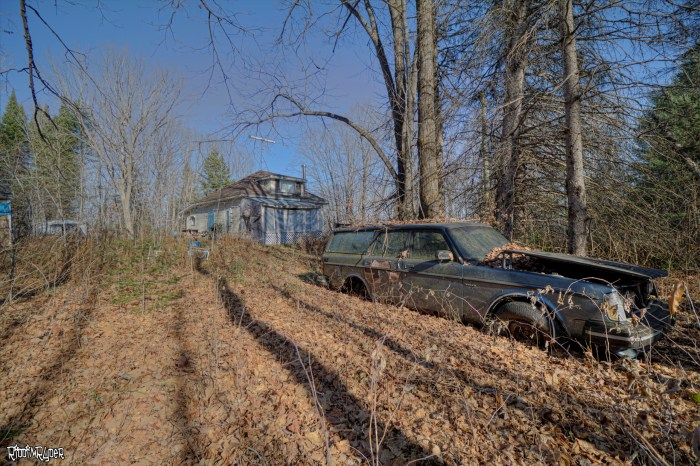 Abandoned Cabin Time Capsule