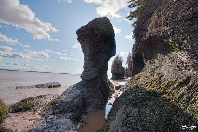 Hopewell Rocks aka The Rocks