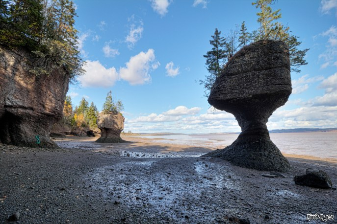 Hopewell Rocks Bay of Fundy