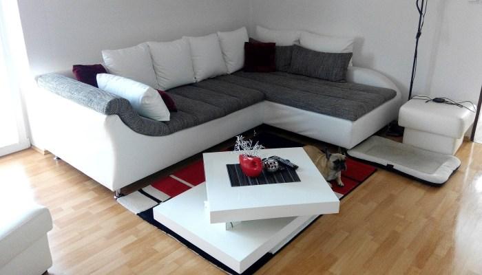 Savoir et Intelligence : je me coucherai dans mon canapé