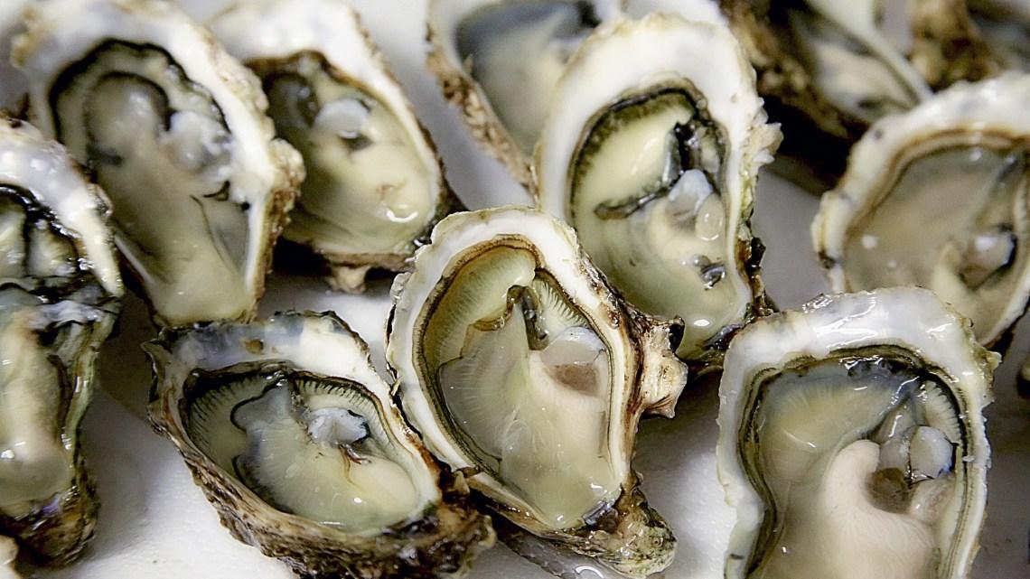 Étonnant : manger des huîtres pourrait éviter d'en avoir le QI