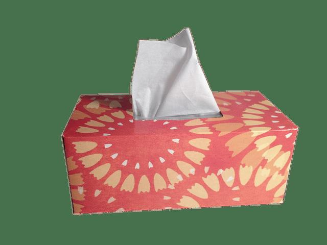 Vente en Ligne : si vous vous trompez de boutique, il va vous falloir des mouchoirs en papier.