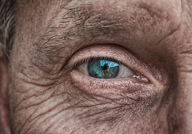 Découverte : un œil fascinant qui porte son regard sur le monde