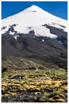 Man sieht wie schwer die Natur arbeitet um den Berge wieder grün zu bekommen.