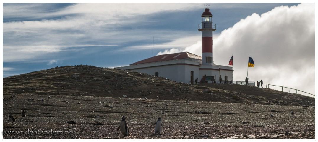 Eine Stadt am Meer bracuht auch einen Leuchtturm. Das ist bei Pinguinen nicht anders.