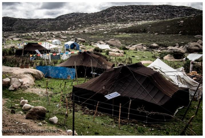 Manchmal gibt es sogar Yak-Hüter-Dörfer