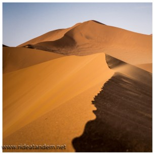 Leider ist es irre windig als wir in den Dünen herumwandern und Sand haben wir hinterher überall......