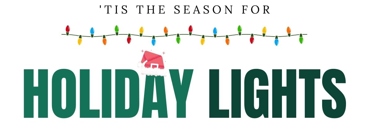 Holiday Lights Tour Charleston