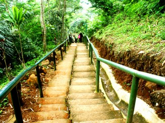 Tangga untuk Turun dari Situs Gunung Padang Desa Karyamukti, Kecamatan Campaka Cianjur, Jawa Barat