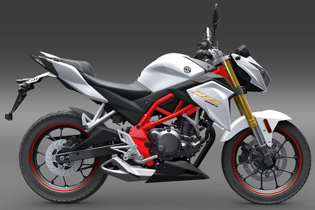 The 2017 CSC RZ3 streetfighter is the fourth Zongshen-built 250cc model in CSC's lineup.