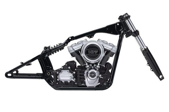 2018 Harley-Davidson Softail frame