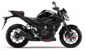 Yzf -r25 naked1