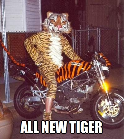 All New Tiger