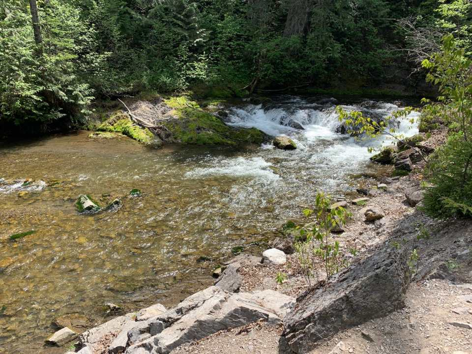 lizard creek - mount fernie provincial park campground review