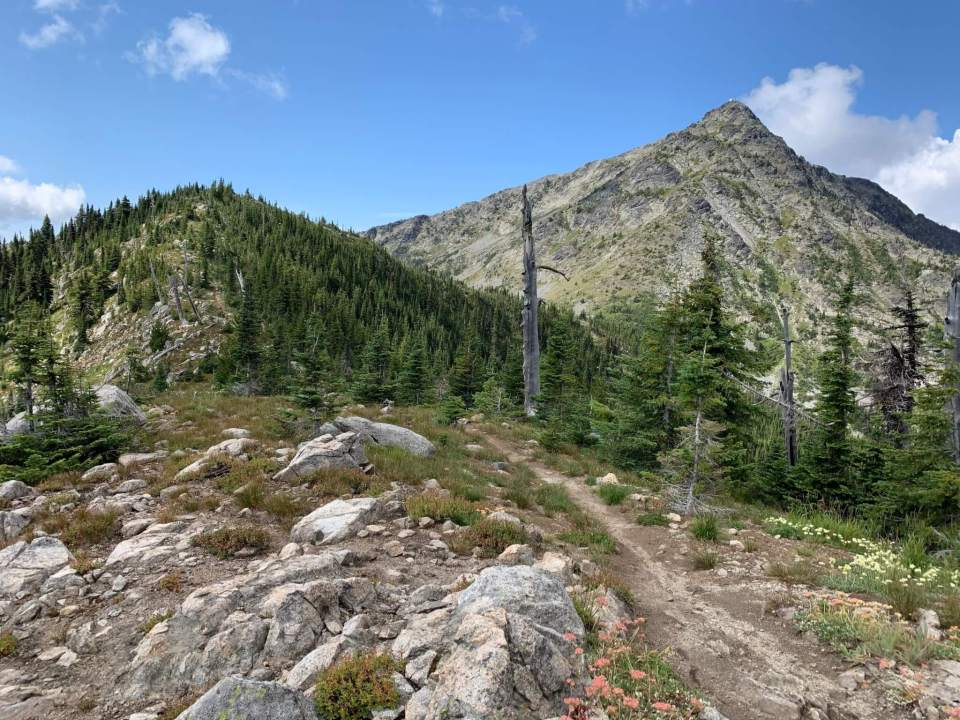 an alpine view along the Seven Summits trail with Old Glory Mountain in the distance