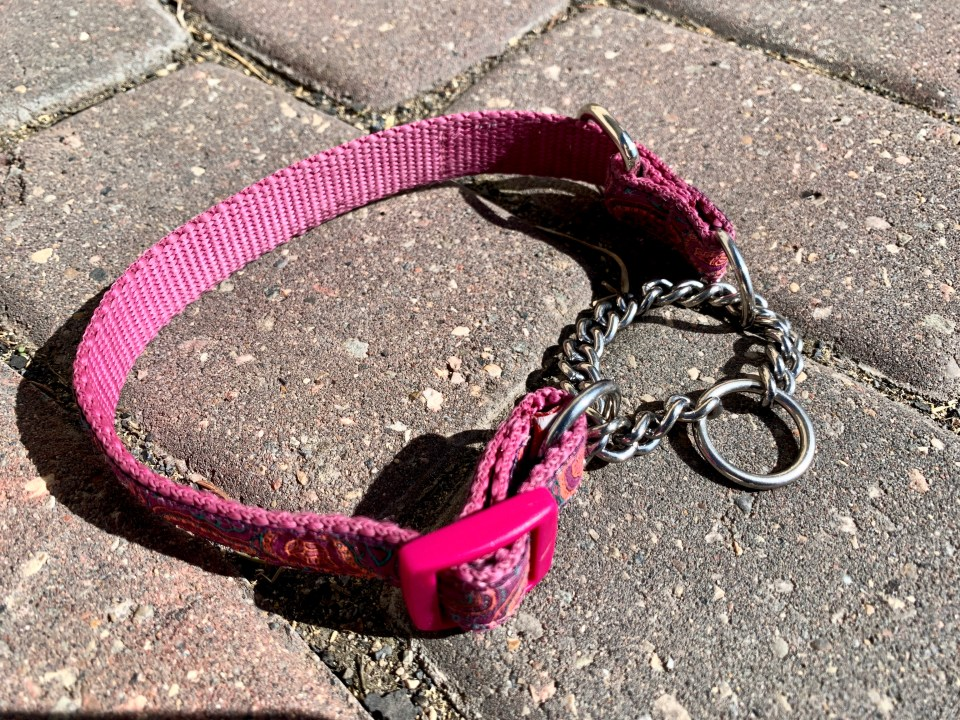 a Martingale collar