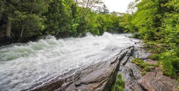 Buttermilk Falls Crop