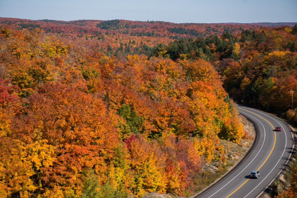Hwy 60 Algonquin PP Peak Fall Colours